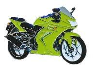 AS KAWASAKI Ninja 250 R grün 2012 Keyring